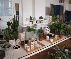 interior, minimal, and plants image