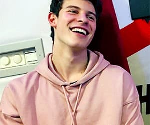 shawn mendes, pink, and shawn image