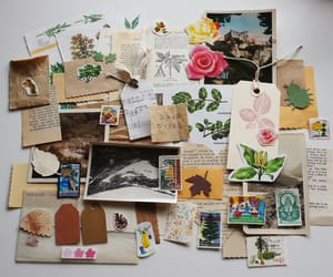 flowers, letters, and Paper image