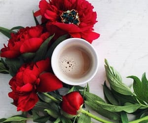coffee shops, coffee, and flowers image