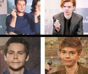 actors, the maze runner, and cute image