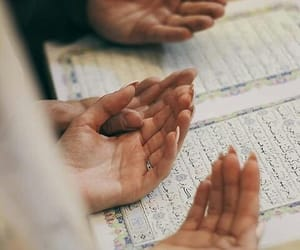 Koran, love, and حُبْ image
