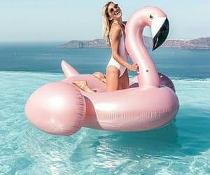 beach, pool, and flamingo image