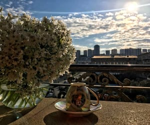 coffee, flower, and home image