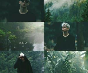 forest, singer, and melovin image
