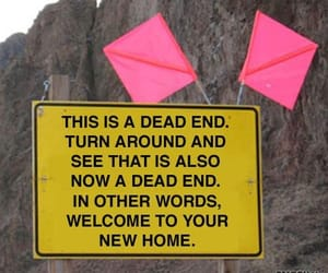 home, quotes, and signpost image