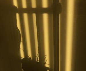 aesthetic, shadow, and yellow image