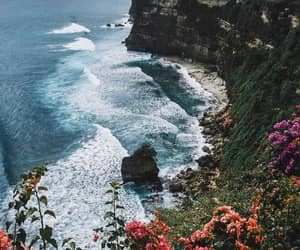 flowers, beach, and ocean image
