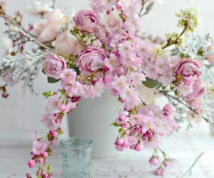 cottage, feminine, and flowers image
