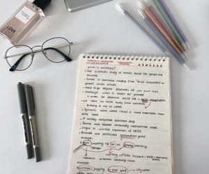 notes, study motivation, and studyspiration image