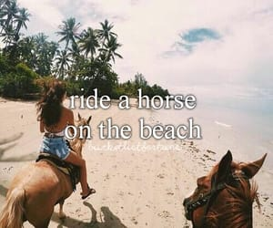 beach, best friends, and horse image