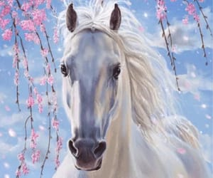 beautiful, spring, and white horse image