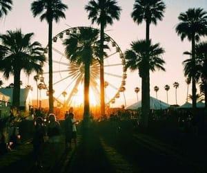 summer, coachella, and sunset image