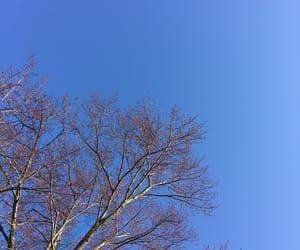 blue, photography, and sky image