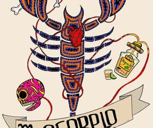 astrology, drawing, and scorpio image