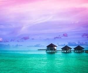beach, lagoon, and Maldives image