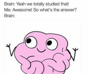 funny, brain, and school image