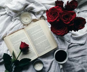 book, read, and rose image