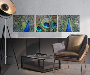 etsy, peacock feather, and peacock decor image