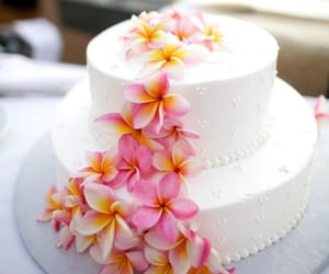 cake, hawaii, and tropical image