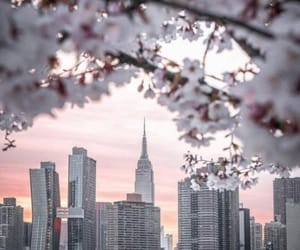 city, good morning, and ny image