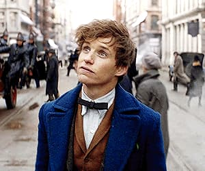 eddie redmayne, gif, and fantastic beasts image