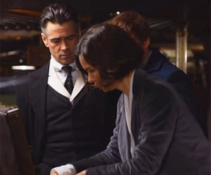 colin farrell, gif, and katherine waterston image