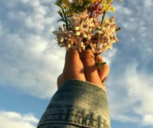 flowers, tumblr, and sky image