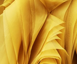 yellow and background image