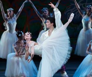 ballerina, dance, and tanzen image