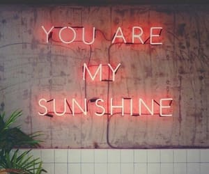 sunshine, light, and quotes image