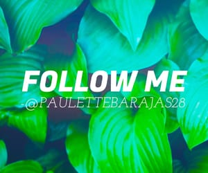 easel, followers, and follow me image