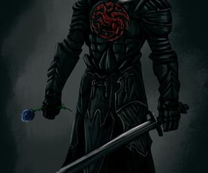blue rose, game of thrones, and house targaryen image