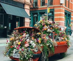 car, colors, and flowers image