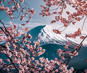 japan, mount fuji, and spring image