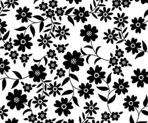 florals, flowers, and wallpaper image