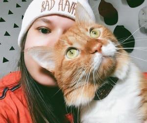 bad, gato, and olhos verdes image