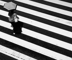 b&w, stripes, and black&white image