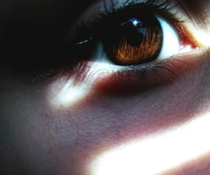 brown, dark, and eyeball image