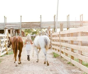 country living, horses, and equestrian image