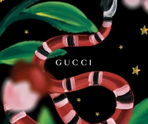 gucci, wallpaper, and snake image