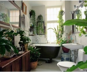 home improvement, decor ideas, and natural decor image