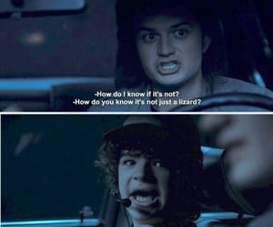 stranger things, dustin, and funny image