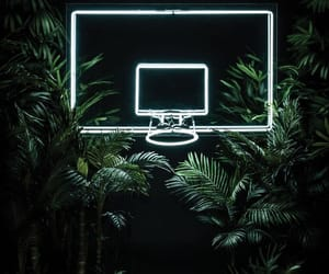 neon, green, and Basketball image