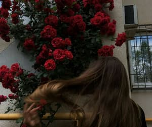 girl, rose, and hair image