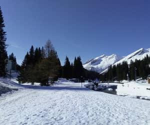 landscape, san bernardino, and mountain image