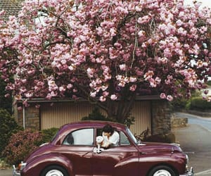 car, flowers, and pink image