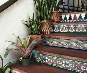 plants and stairs image