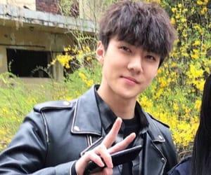 boy, korean, and singer image