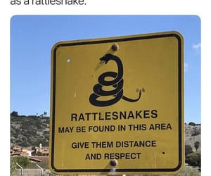 distance, rattlesnake, and rights image
